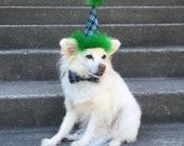 Birthday Hat for Dogs, Birthday Hat for Cat, Plaid, Blue and Green