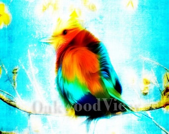 Brilliant Songbird Print, Brand New Surreal Giclee Art, Color 4x6 Matted Bird Picture in Dark Blue 5x7 Mat, Avian Wildlife, FREE SHIPPING
