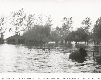Real Photograph of flooded Town 1950's Overflowing Lake Vintage Photograph/Postcard Size Black and White