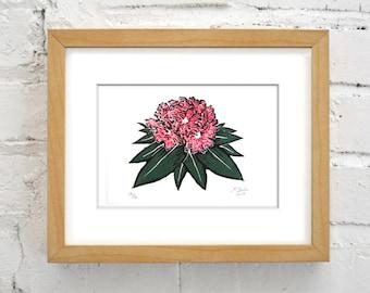 Rhododendron Mountain Laurel Flower - 5x7 Original Linocut Block Print