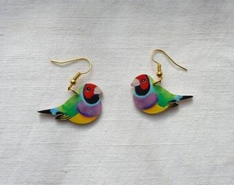 Gouldian finch earrings
