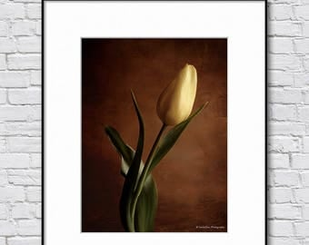 Flower photography, tulip photograph, wall decor photo print, rustic wall art, brown yellow home decor print, vintage fine art print