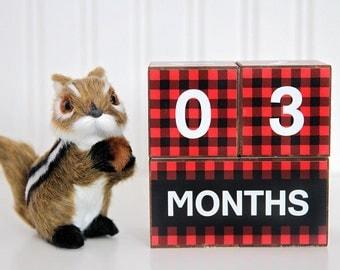 DIY Baby Age Blocks, Milestone Blocks, Baby Shower Gift, Photo Prop, Baby milestone blocks, Monthly baby blocks, PRINTABLE FILE,