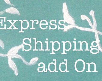 Express Shipping Add On Fee
