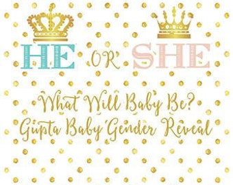 Custom Baby Gender Reveal Backdrop He Or She Prince Or Princess Banner Background Event Photo Booth  (Multiple Sizes & Materials Available)