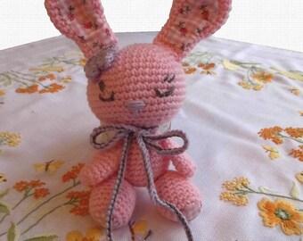 Bunny Amit Amigurumi, crochet critters, cuddly toy, baby toys, Nr.3, crochet Bunny,