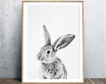 Rabbit Print, Nursery Decor, Black and White Photogarphy, Baby Animal Portrait, Woodland Animal Print, Nursery Animal Print, Digital Print