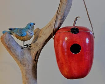 Red Delicious Apple Birdhouse, Easy clean!