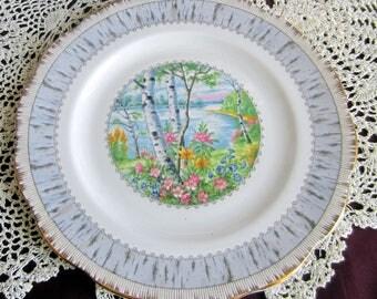 Royal Albert SILVER BIRCH Bone China Salad Plate - Made in England