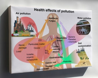 Canvas 24x36; Health Effects Of Pollution On Humans