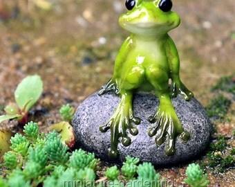 Cute Frog on Stone for Miniature Garden, Fairy Garden