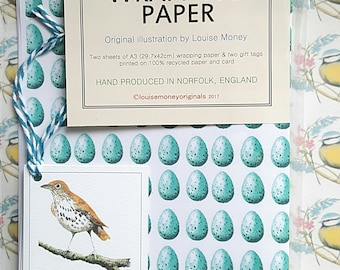 Song thrush wrapping paper. Wrapping paper with thrush eggs. Song thrush. Thrush wrapping paper. Bird gift wrap. thrush gift. wildlife gift