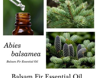 Balsam Fir Essential Oil, balsam Fir Oil, Fir Balsam Essential Oil, Abies balsame, 100% Pure Authentic Balsam Fir EO