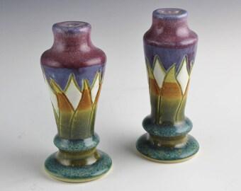 Cactus in Bloom Salt & Pepper Shaker Set, Southwest Tableware by Arizona Potter, Monte Voepel