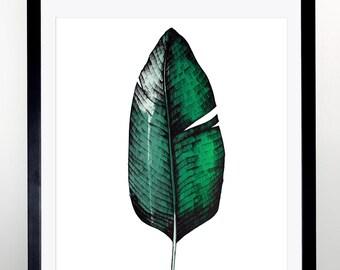 Hand Screen Printed Large A1 Tropical Banana Leaf Print - Leaf / Botanical Design