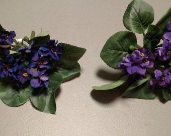 3 violet plants