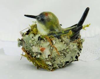 hummingbird realistic polymer clay hummingbird in a nest