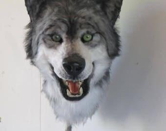 fursuit gray wolf wolf fursuit mask mask has book