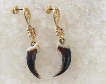 Gold filigree Coyote Claw Earrings