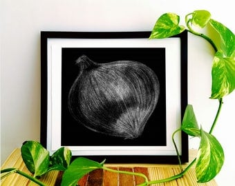 Black and White Charcoal Onion Kitchen Drawing Print