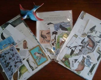 Vintage paper bird theme ephemera pictures illustrations images of birds for craft collage decoupage cards scrapbooks mixed media journals