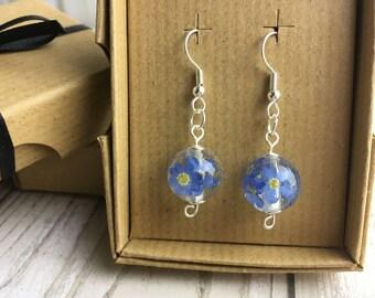 Forget me not earrings-real flower earrings-pressed flower earrings-resin jewelry-terrarium earrings