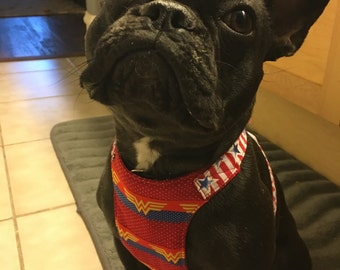 French BullDog  Harness / Wonder Woman