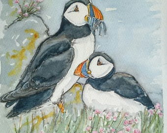 Puffin painting art original watercolour painting one off wildlife portrait of puffins on the Farne Islands in sea thrift by EdieBrae