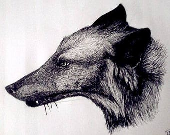 original line work ink fox illustration