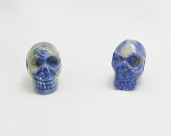 Sodalite mini Skulls