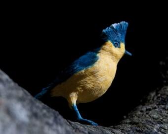 Bird Sculpture - Taiwanese Birds Yellow Titan Titan Tit