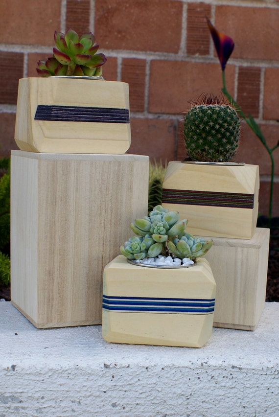 Modern Wood Geometric Succulent Planter with Accent Stripe