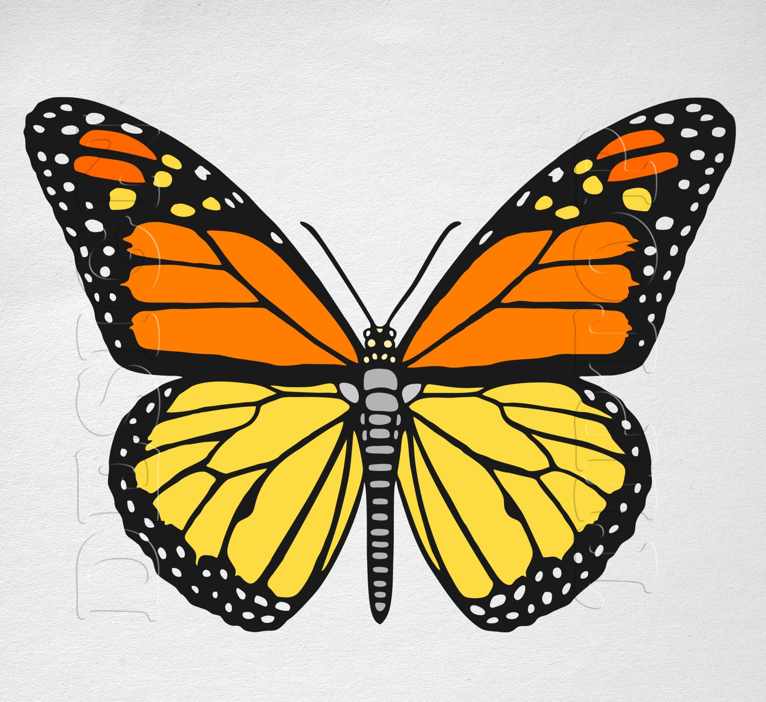 It's just a picture of Vibrant Butterfly Cut Out Printable