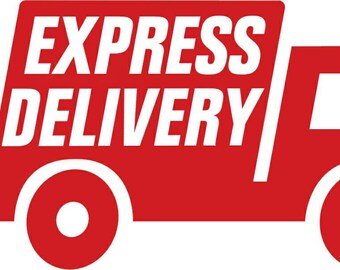 Express delivery to the U.S