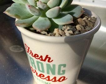 Retro Espresso Can with Mini Succulent