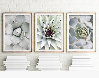 Cactus Prints, Set Of 3 Prints, Cacti, Succulent Print, Botanical Art, Cactus Print, Wall Art, Cactus, Art Prints, Print, Cactus Art, 112d