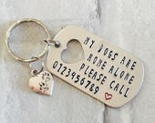 Pets are home alone hand stamped keyring