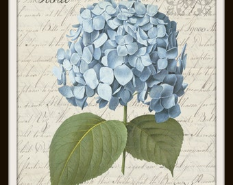Hydrangea Vintage Queen Bee Butterfly Printable Instant Download Transfer Fabric digital collage sheet printable instant wall art graphic