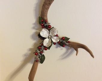 Real deer antler wall hanging