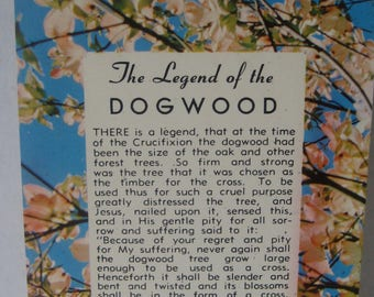 Vintage Post Card Postcard Legend of the Dogwood Unmailed. Great color