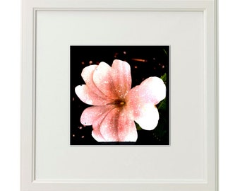 Giclée Print from Photograph of Abstract Flower