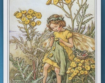 The Tansy Flower Fairy,  Cicely Mary Barker Flower Fairy Book Plate Print