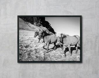 Horse Print, Black and White Photo, Horses Poster, Wall Art Printable, Instant Download, Modern Art, Digital Print