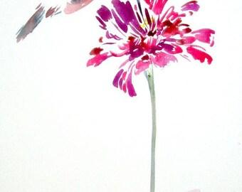 Hummingbird painting, Bird watercolour,  Bird painting,  Animal watercolour, Bird drawing