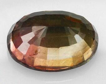 Bi-Color Tourmaline 38 Carat Oval Faceted Gemstone Brazil QDTg61