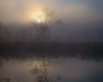 Foggy Sunrise on the Marsh