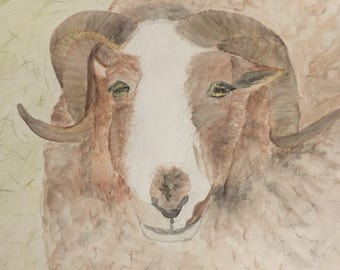 Jacob Ram - original watercolor painting