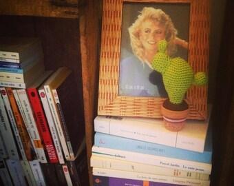 Mini Cactus in crochet Charles