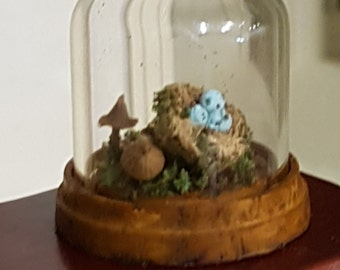 Miniature dome with curio display