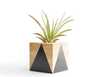 Air Plant Planter,  Black Planter, Air Plant Holder, Modern Planter, Geometric Planter, Small Wood Pot, Office Plant Gifts, Desk Planter